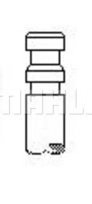 GMC 7323108 Exhaust Valve